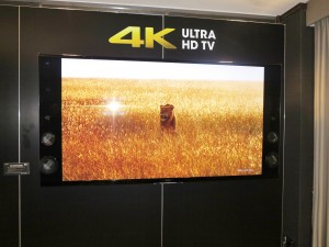 Any of the flat-screen TVs on the market including the 4K models can serve as electronic signage