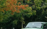 Fall setting in Minute Man park - picture courtesy of Ian Britton (FreeFotos.com)