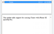 If this fails to update iTunes or QuickTime, you may have to download these programs from Apple's download site