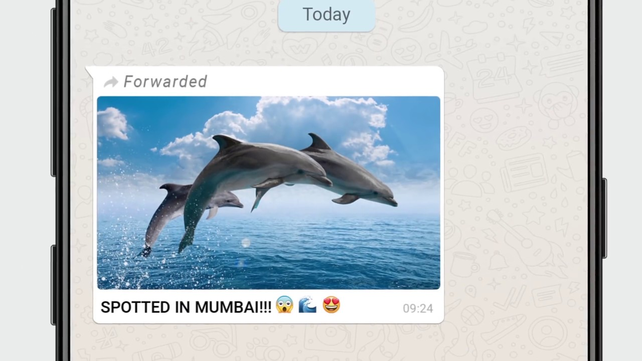 WhatsApp now highlights messaging services as a fake-news vector