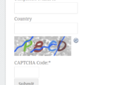 Cloudflare to work on simplified CAPTCHA
